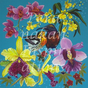 Sunbird Couple amidst orchids