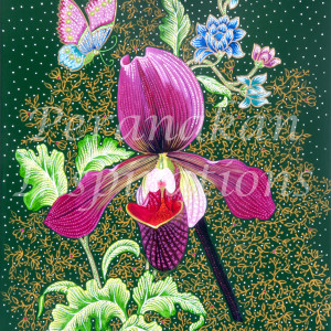 Lady Slipper2