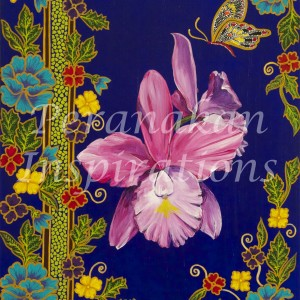 pink cattleya on royal blue